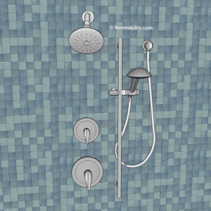 standard-showerhead-and-handheld-homeability