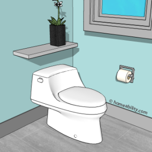 1-piece-toilet-homeability