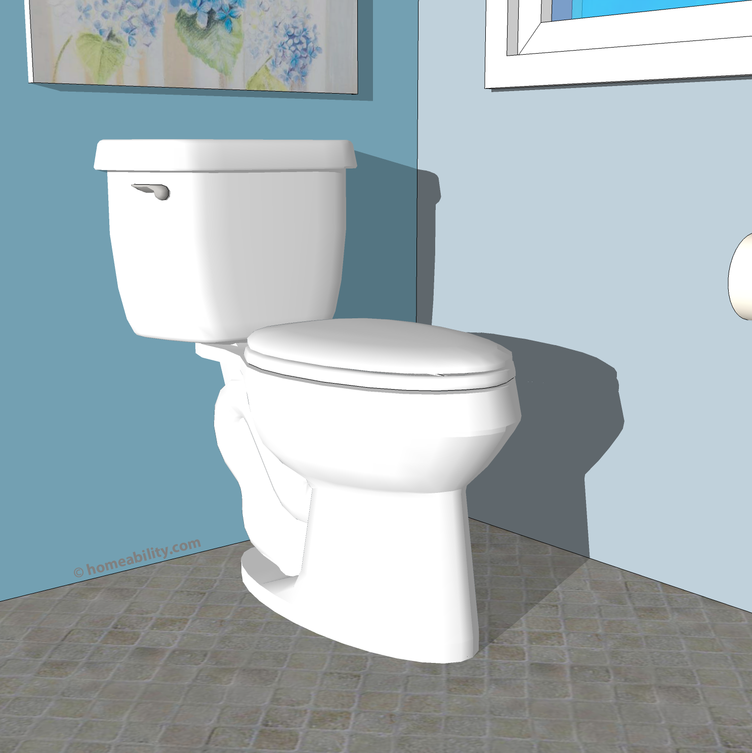Toilets for Disabled Person: Which type is Best? | homeability.com